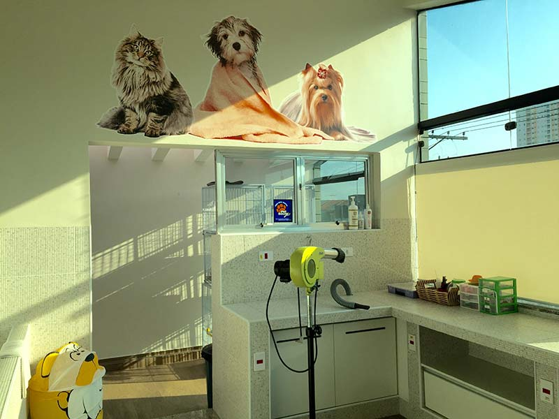 centro-estetico-veterinaria-ponte-grande-3